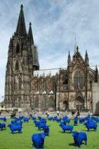 Blauschäfer in Köln
